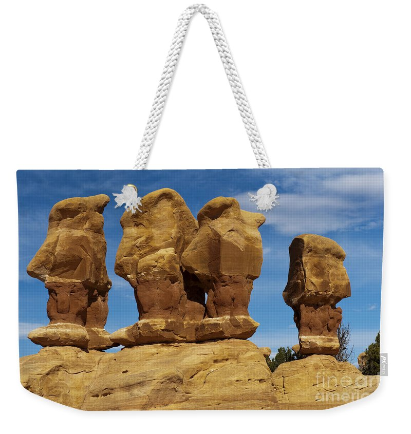 Southwest Weekender Tote Bag featuring the photograph The Board Meeting by Sandra Bronstein