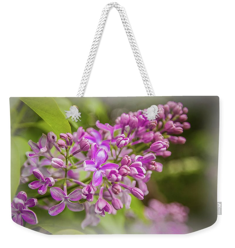 Anna Matveeva The Branch Of Lilac Photographers Branch Purple Lilac Spring Bloom Macroi��iii�� Weekender Tote Bag featuring the photograph The Branch Of Lilac by Anna Matveeva