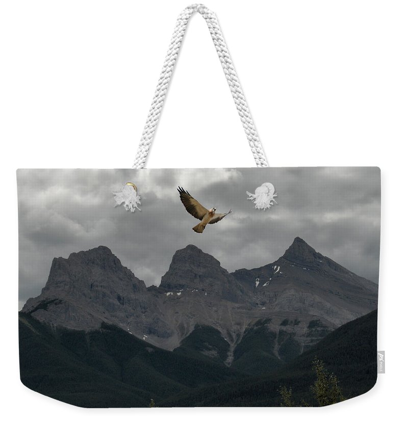 Hawk Mountains Trees Woods Banff Alberta Wild Bird Hunter Flying Three Sisters Weekender Tote Bag featuring the photograph The Calling by Andrea Lawrence