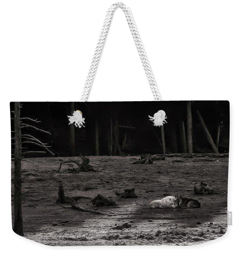 Yellowstone Weekender Tote Bags