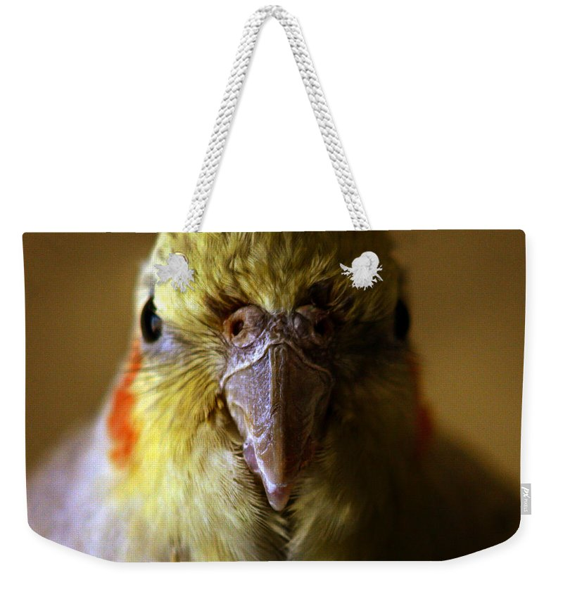 Cockatiel Weekender Tote Bag featuring the photograph The Cockatiel by Angel Ciesniarska