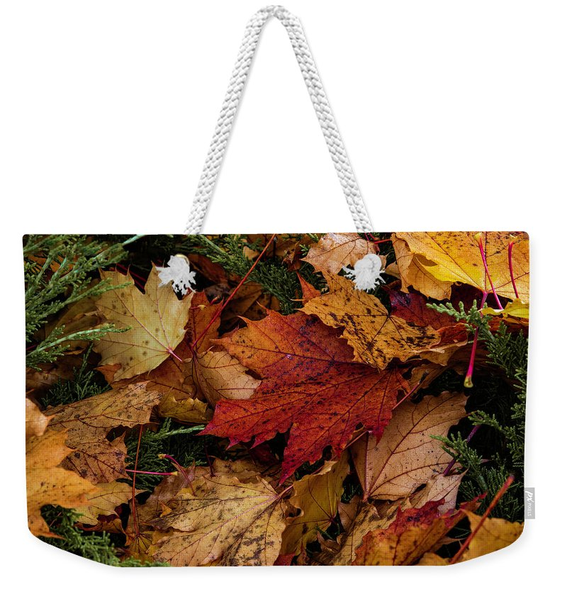 Autumn Weekender Tote Bag featuring the photograph The Color Of Fall by Hans Franchesco