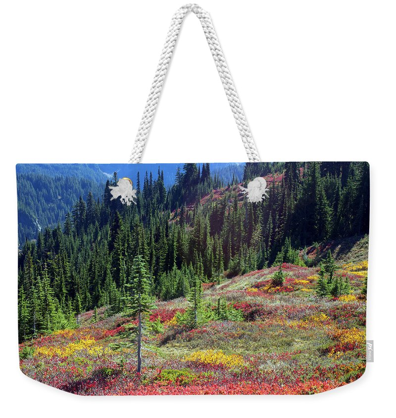 Landscape Weekender Tote Bag featuring the photograph The Colors Of Autumn by Emerita Wheeling