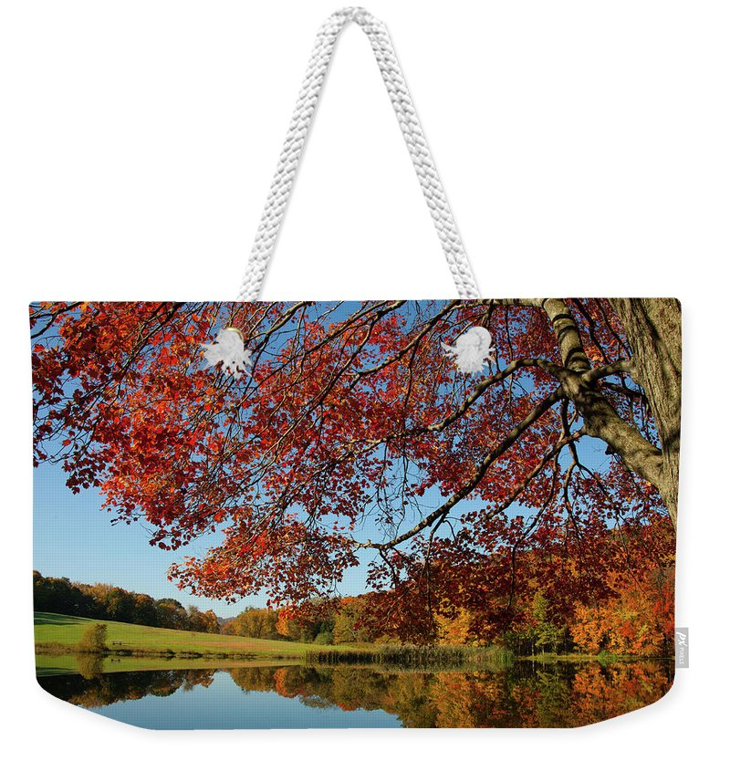 Colors Reflect Weekender Tote Bag featuring the photograph The Comfort Of Autumn by Karol Livote