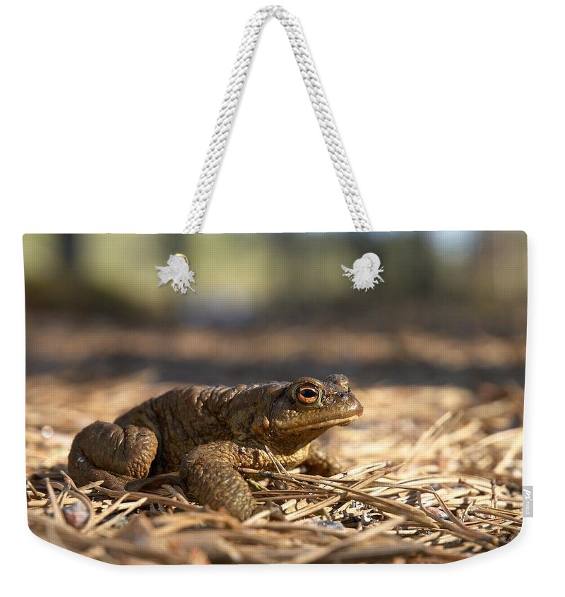 Seitseminen Weekender Tote Bag featuring the photograph The Common Toad 4 by Jouko Lehto