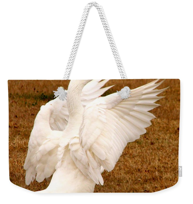 Geese Weekender Tote Bag featuring the photograph The Conductor by J M Farris Photography