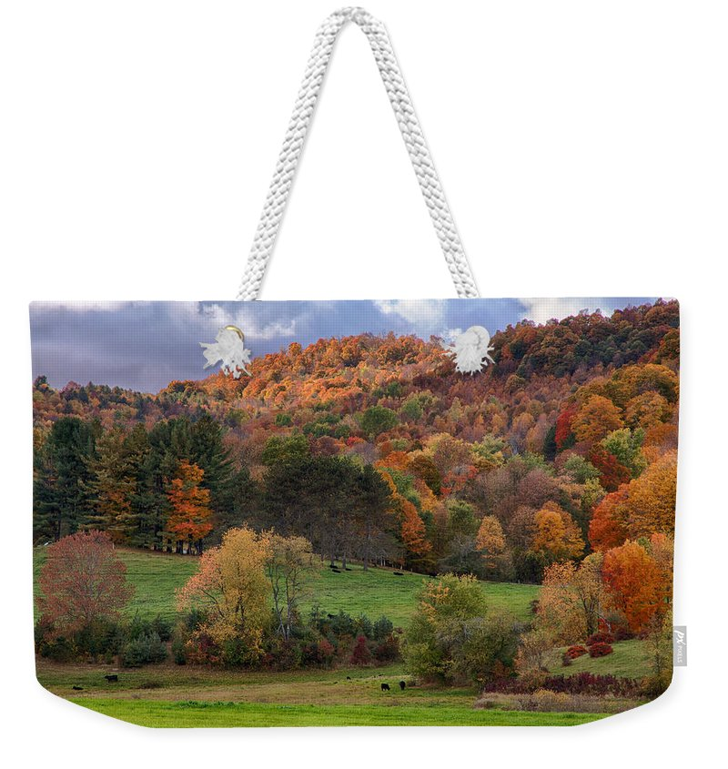 #jefffolger Weekender Tote Bag featuring the photograph The Cows Are In The Dell by Jeff Folger