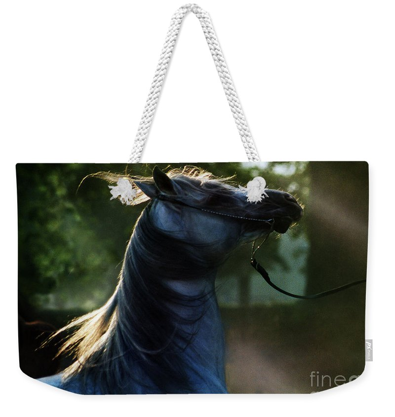 Sunset Weekender Tote Bag featuring the photograph The Crazy Horse by Angel Ciesniarska