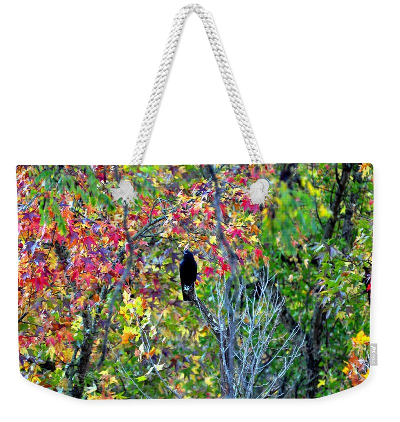 The Crow Weekender Tote Bag featuring the photograph The Crow by Brittany Horton