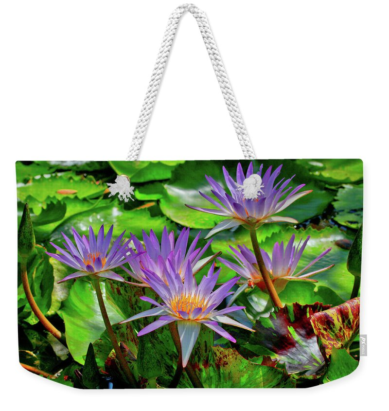 Mercer Arboretum Weekender Tote Bag featuring the photograph The Dance Of The Lillies by Linda Unger
