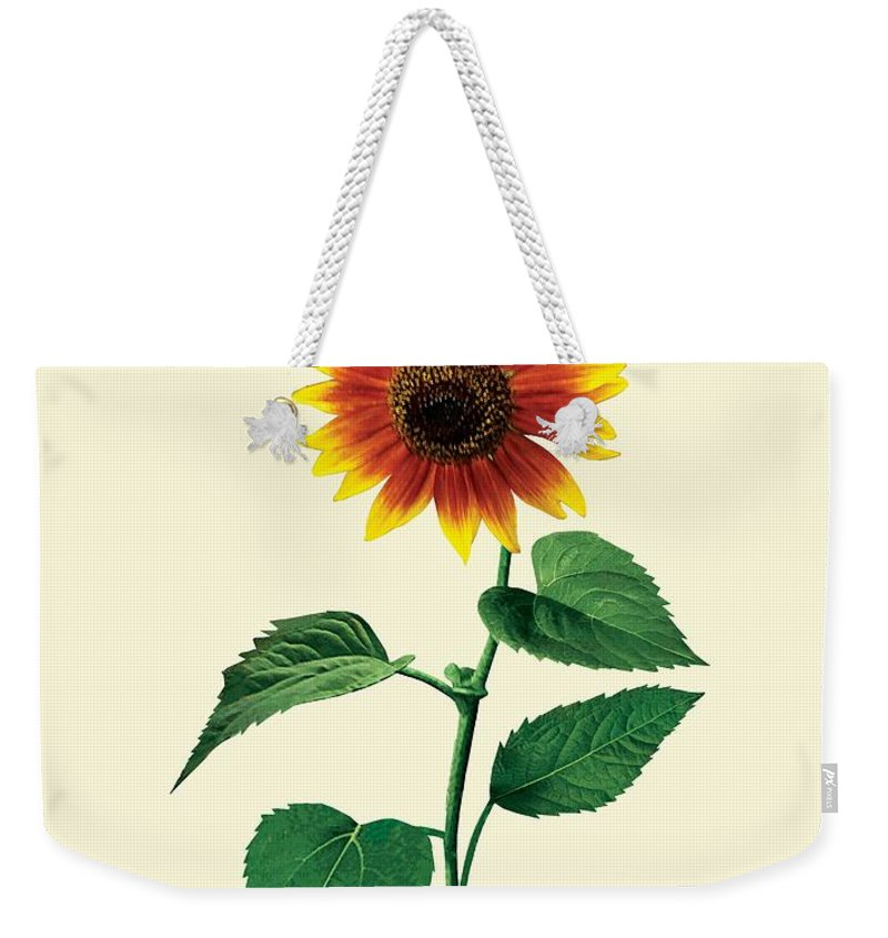 Sunflower Weekender Tote Bag featuring the photograph The Dancing Sunflower by Susan Savad