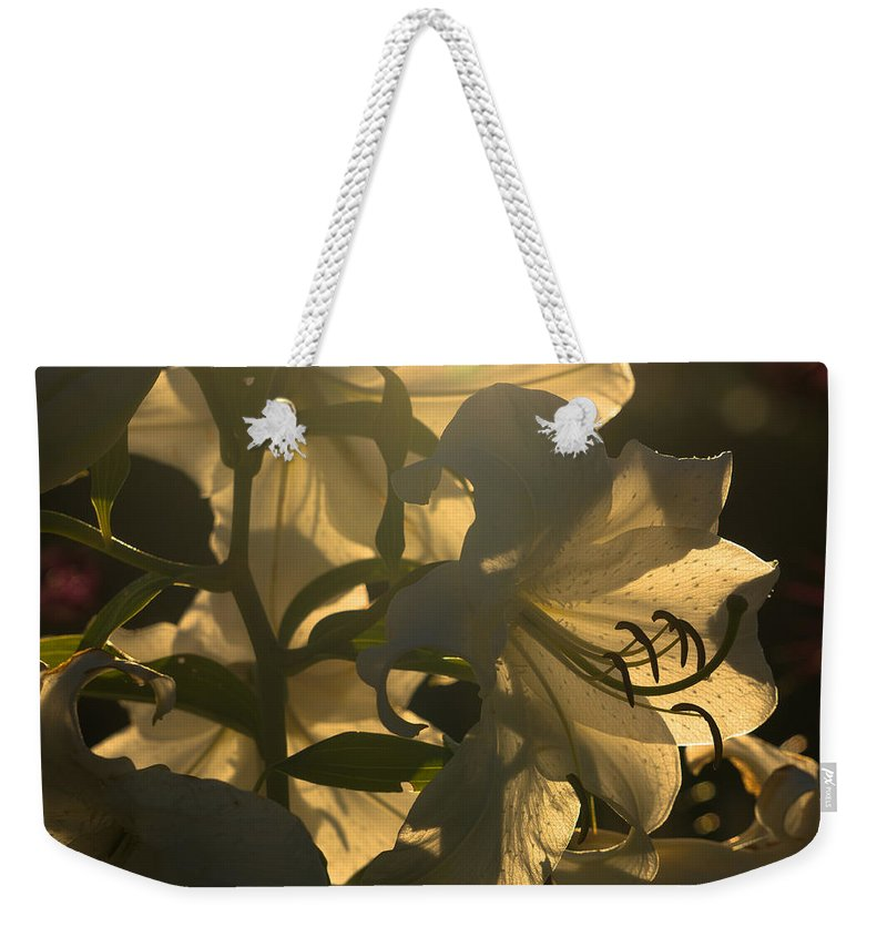 Flowers Weekender Tote Bag featuring the photograph The Dark Accentuates The Light by Amy S Klein
