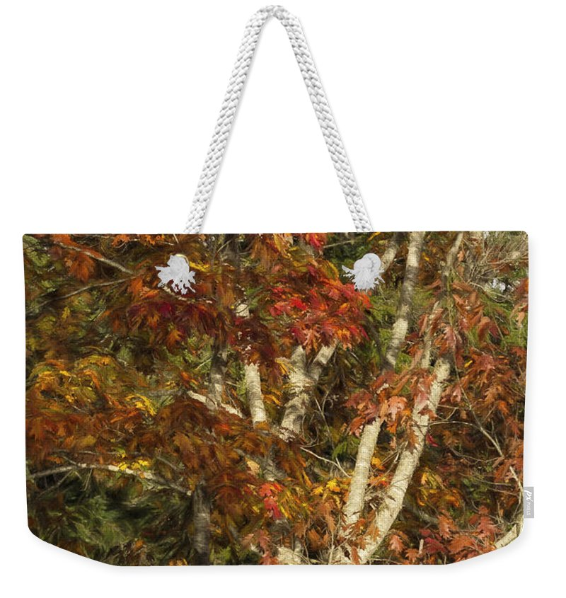 Autumn Weekender Tote Bag featuring the photograph The Dying Leaves' Final Passion by Belinda Greb