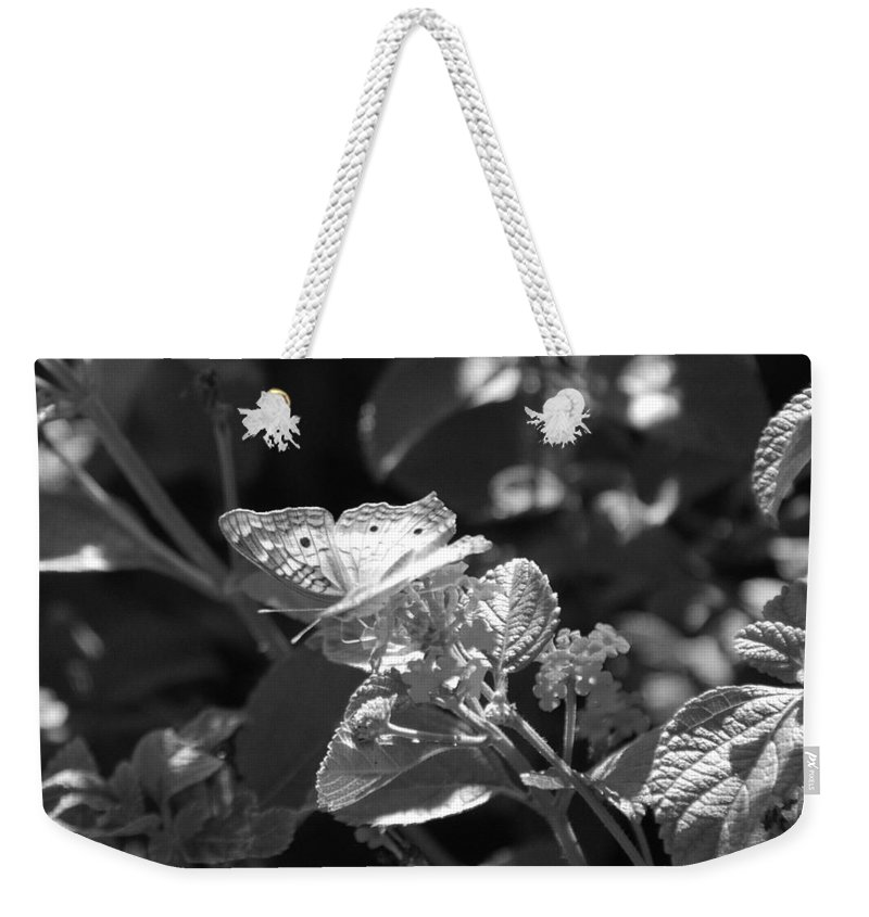 Black And White Weekender Tote Bag featuring the photograph The Eagle Has Landed by Rob Hans
