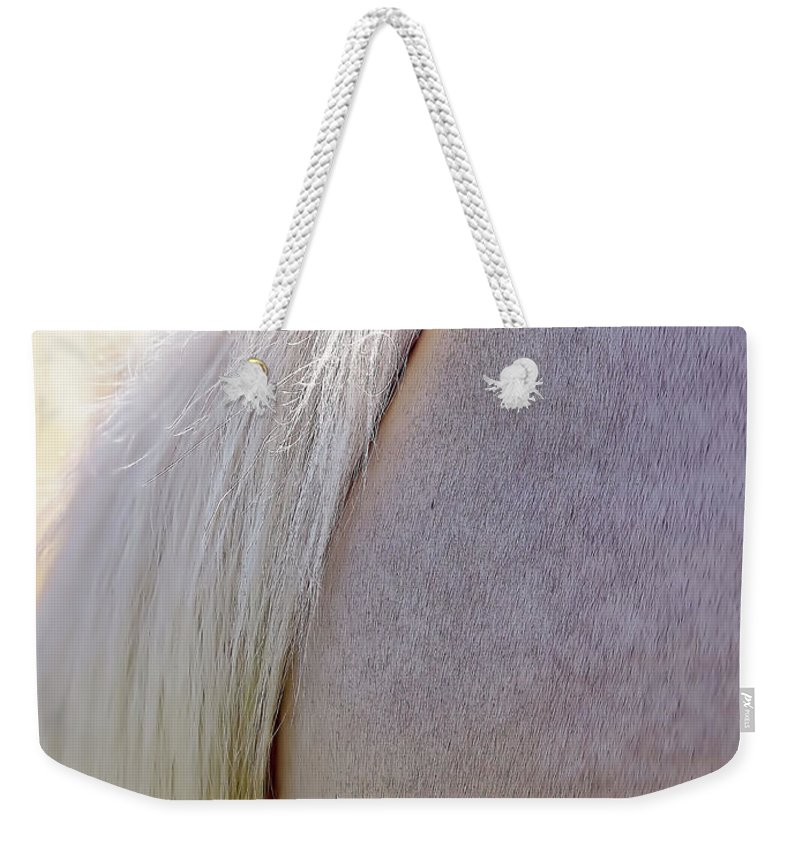 Horse Weekender Tote Bag featuring the photograph The End by D Hackett