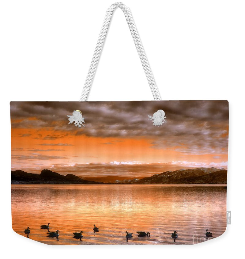 Clouds Weekender Tote Bag featuring the photograph The Evening Geese by Tara Turner