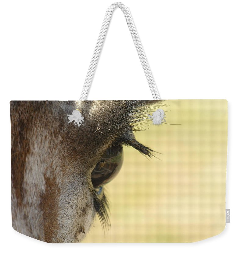 Giraffe Weekender Tote Bag featuring the photograph The Eyes Have It by Diane Greco-Lesser