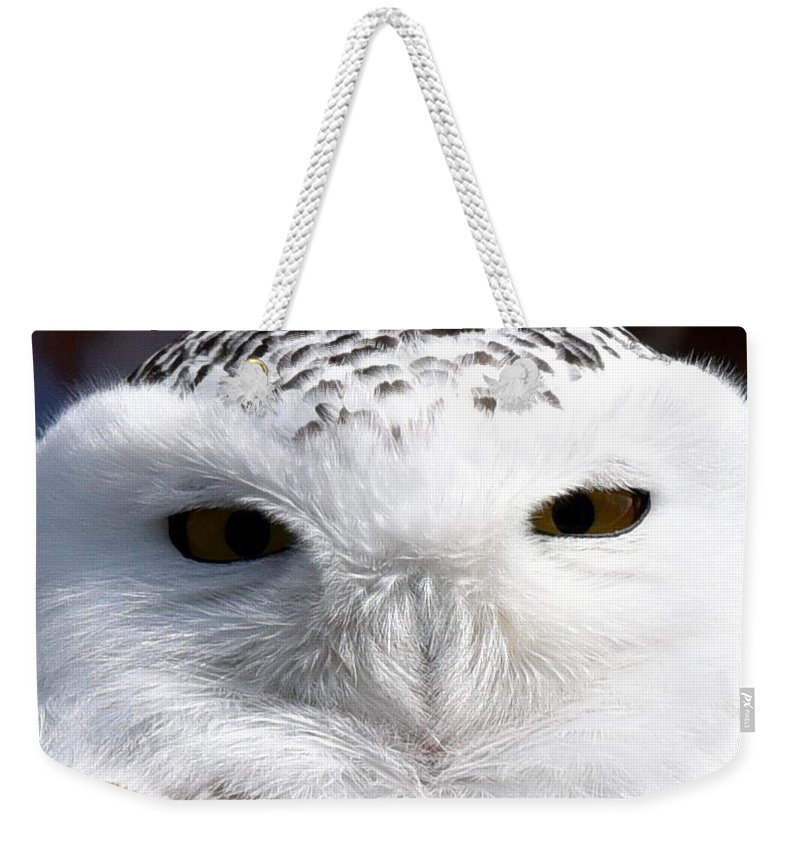 Snowy Owl Weekender Tote Bag featuring the photograph The Eyes Have It by Mark Madion
