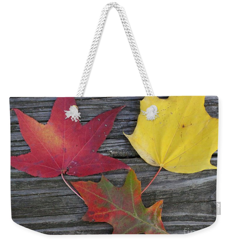 Autumn Weekender Tote Bag featuring the photograph The Fallen Leaves Of Autumn by Dora Sofia Caputo Photographic Design and Fine Art