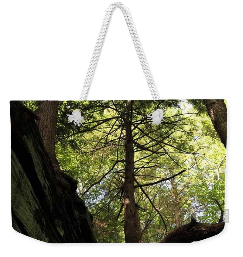 Tree Weekender Tote Bag featuring the photograph The Fallen Triangle by Amanda Barcon