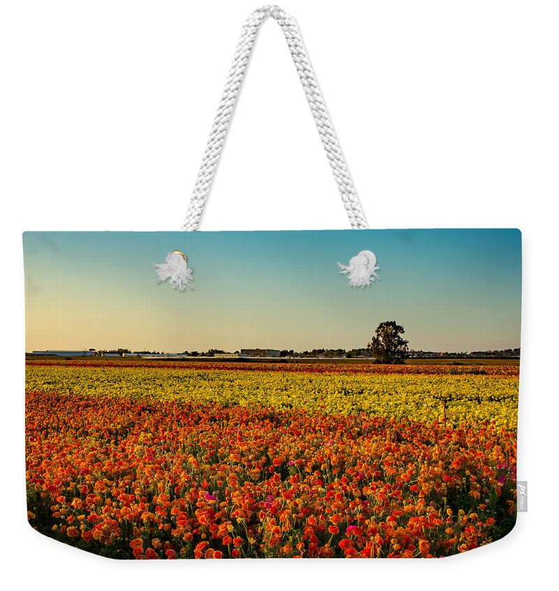 Flowers Weekender Tote Bag featuring the photograph The Field Of Flowers by Mark Perelmuter