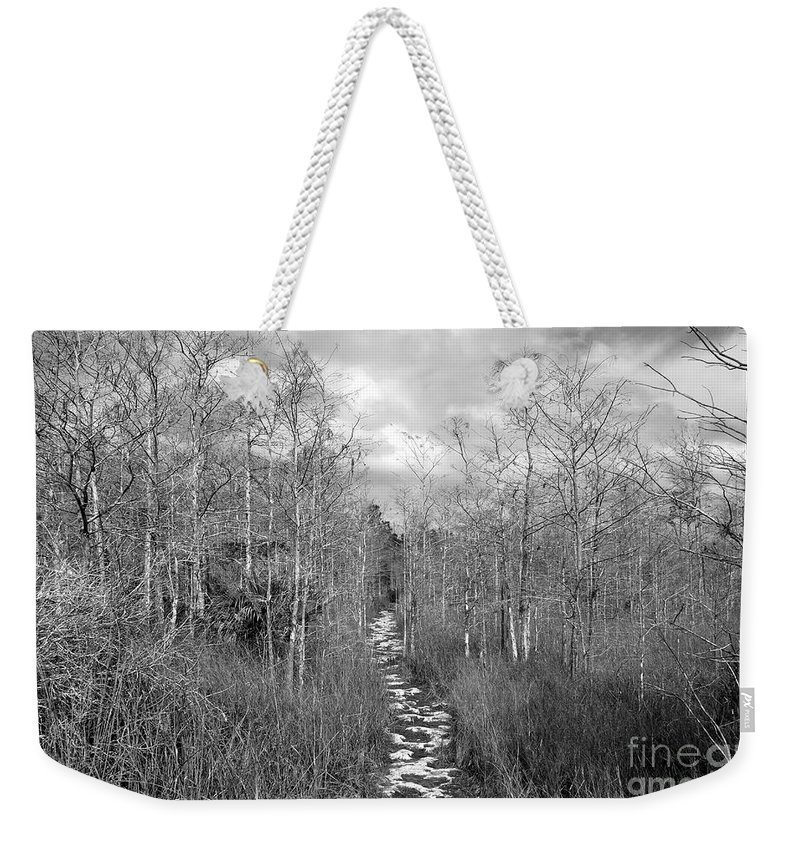 Everglades Weekender Tote Bag featuring the photograph The Florida Trail by David Lee Thompson
