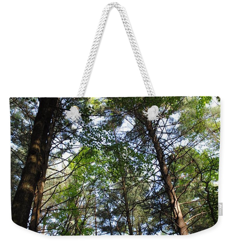 Trees Weekender Tote Bag featuring the photograph The Forest by Jost Houk