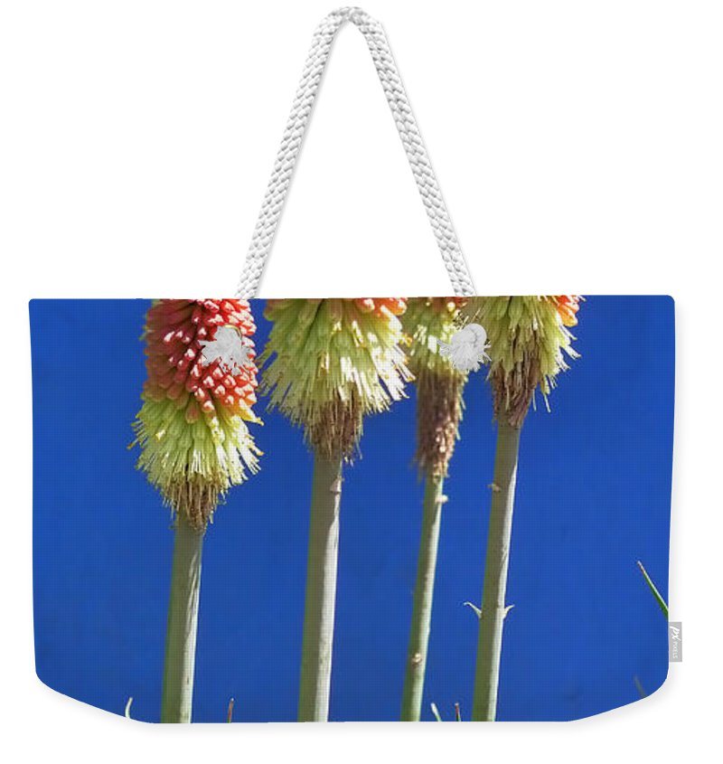 Skip Hunt Weekender Tote Bag featuring the photograph The Four Tops by Skip Hunt