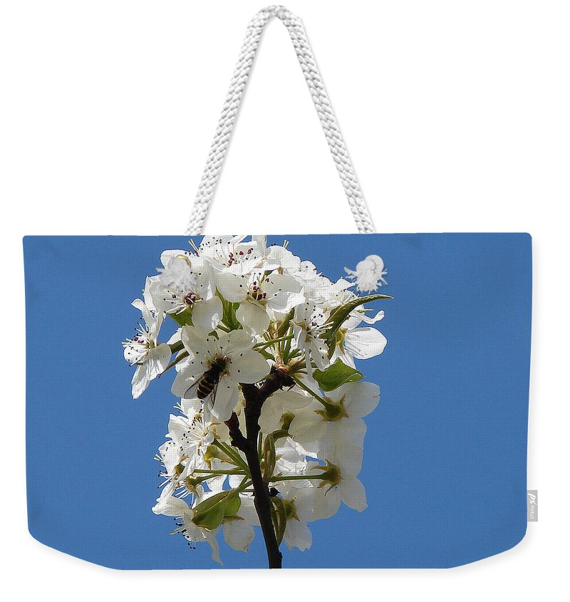 Weekender Tote Bag featuring the photograph The Fruits Of Spring by Luciana Seymour