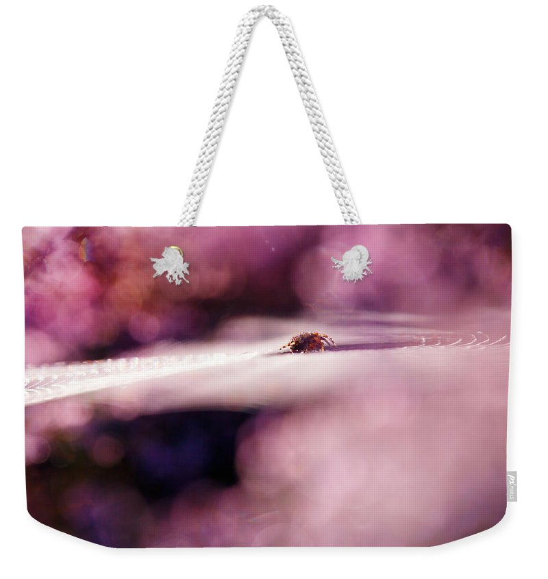 Nature Weekender Tote Bag featuring the photograph The Galaxy by Roeselien Raimond