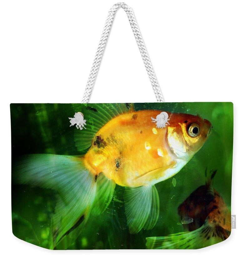 Fish Weekender Tote Bag featuring the photograph The Goldfish by Angel Ciesniarska