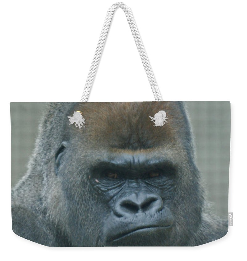 Animals Weekender Tote Bag featuring the photograph The Gorilla 4 by Ernie Echols