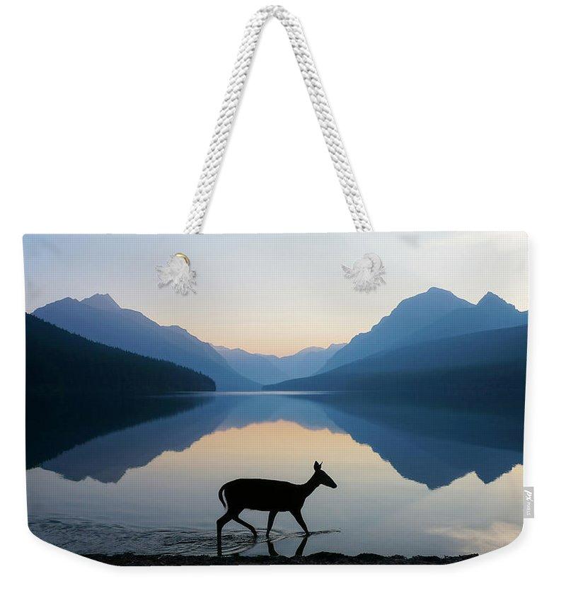 Deer Weekender Tote Bags
