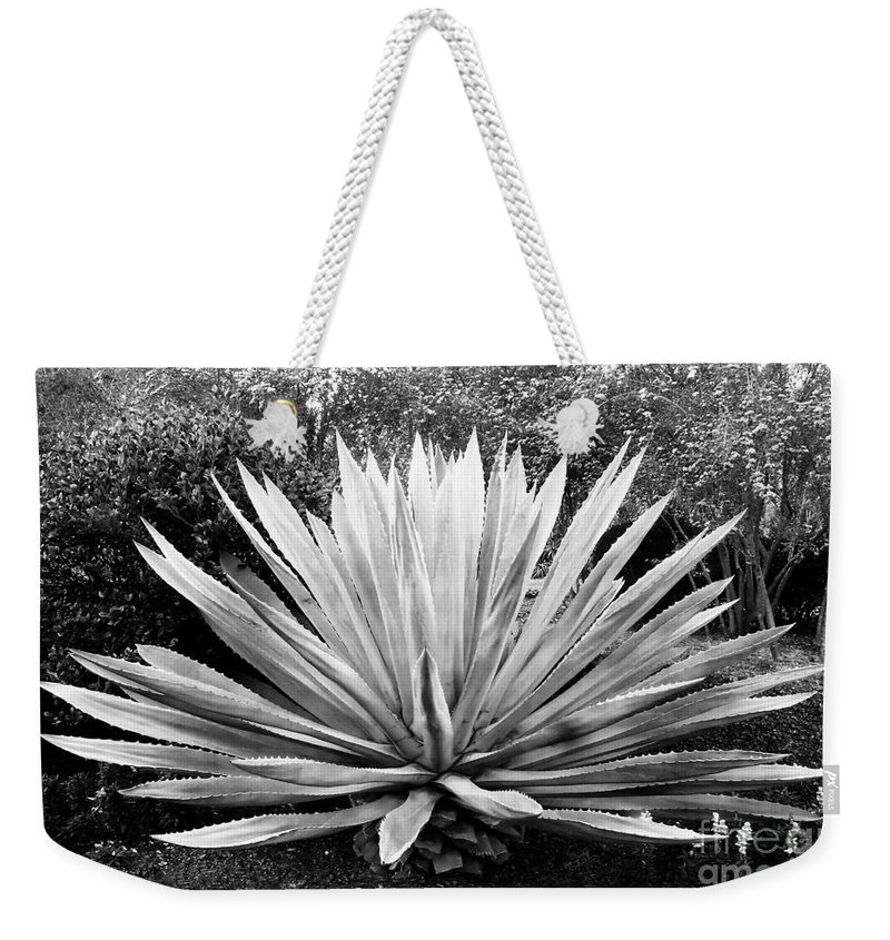 Agave Weekender Tote Bag featuring the photograph The Great Agave by David Lee Thompson