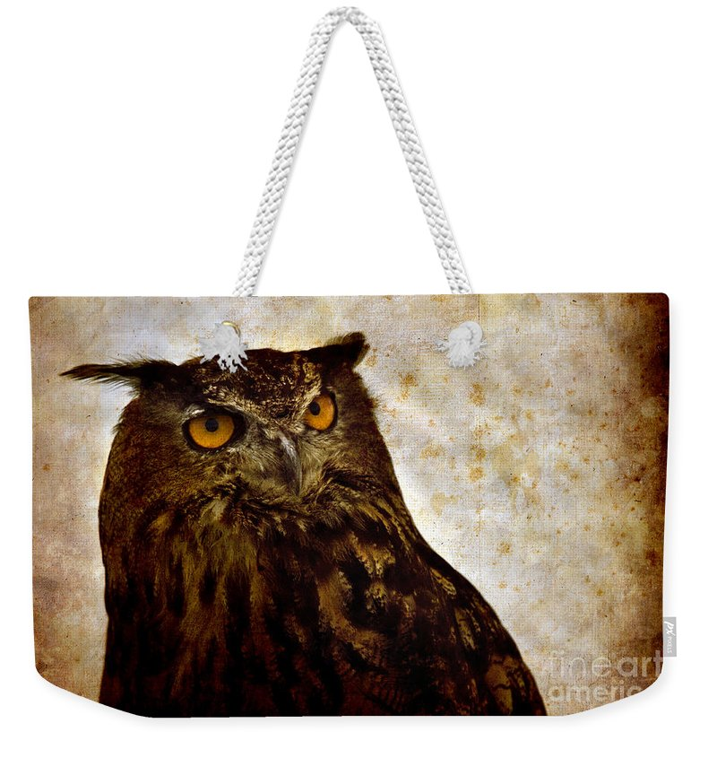 Great Owl Weekender Tote Bag featuring the photograph The Great Owl by Angel Ciesniarska