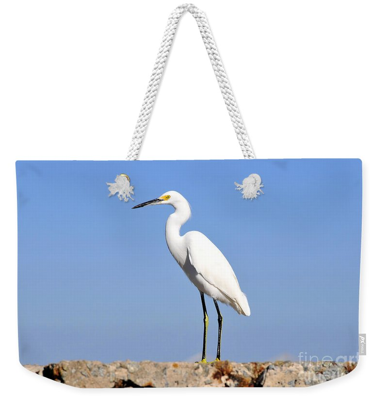 Great Snowy Egret Weekender Tote Bag featuring the photograph The Great Snowy Egret by David Lee Thompson