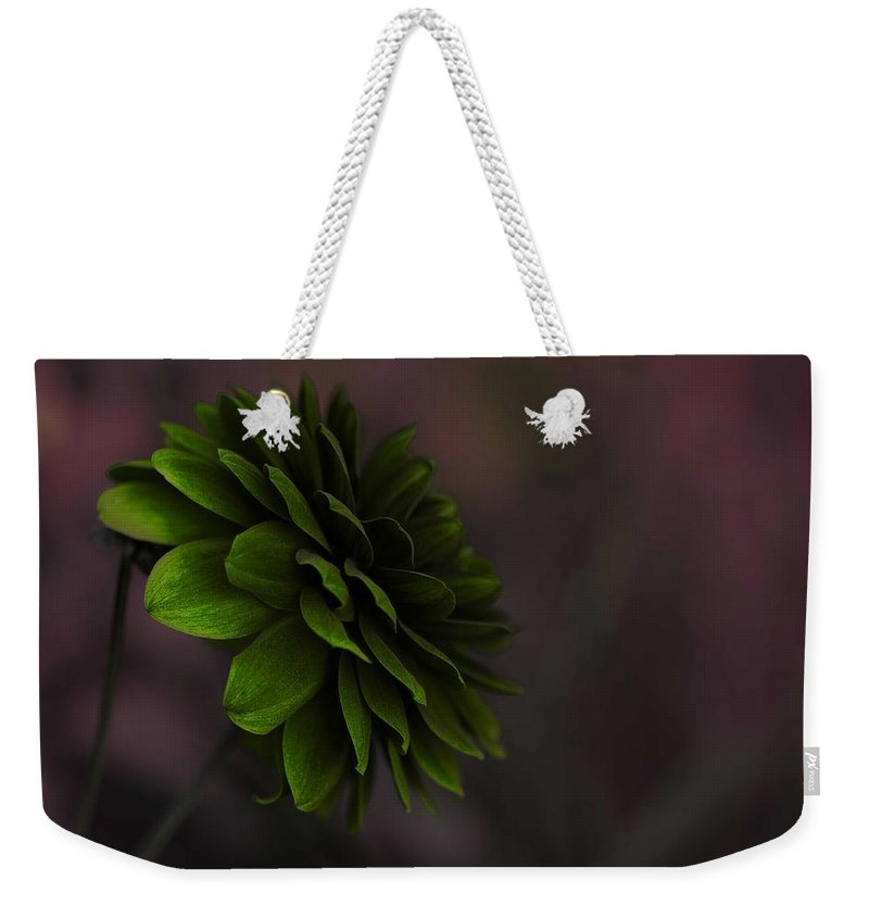 Beautiful Weekender Tote Bag featuring the painting The Green Flower by Celestial Images