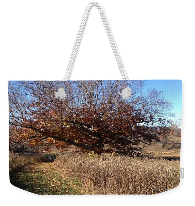 Grass Weekender Tote Bag featuring the photograph The Green Grass Road by Clay Cofer