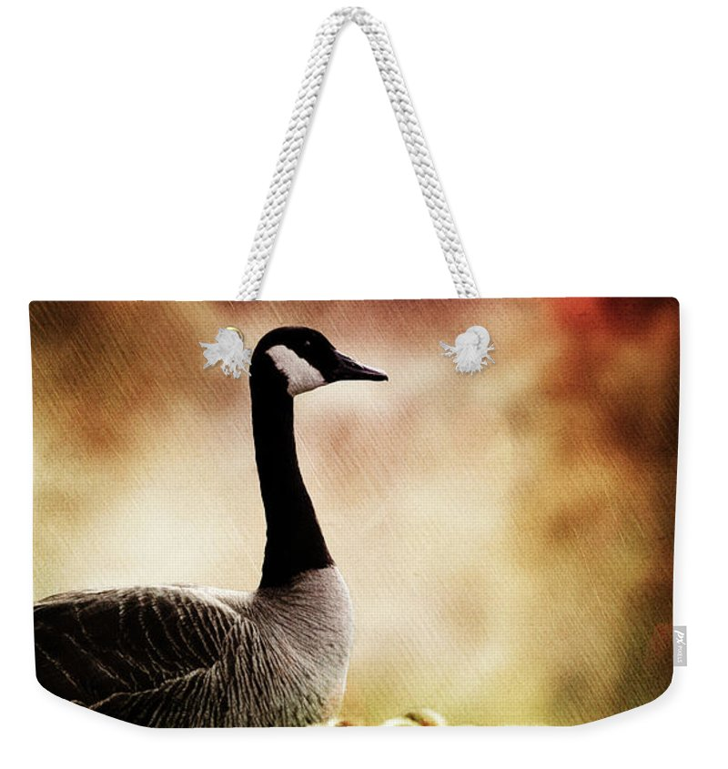 Goose Weekender Tote Bag featuring the photograph The Guardian by Allyson Schwartz