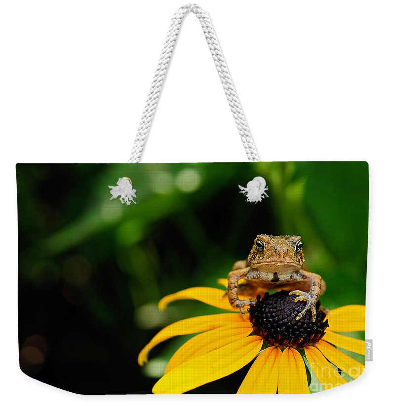 Toad Weekender Tote Bag featuring the photograph The Harbinger by Lois Bryan