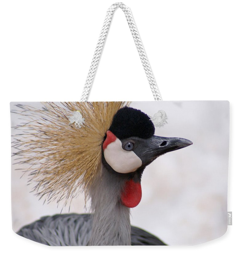 Crane Weekender Tote Bag featuring the photograph The Headress Crowned Crane by Heather Coen