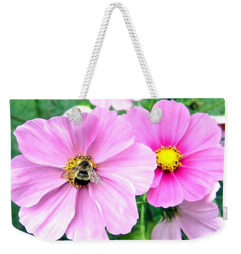 Bee Weekender Tote Bag featuring the photograph The Honeymaker by Will Borden