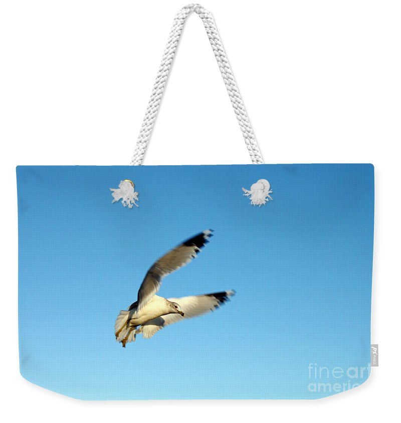 Clay Weekender Tote Bag featuring the photograph The Hunt by Clayton Bruster