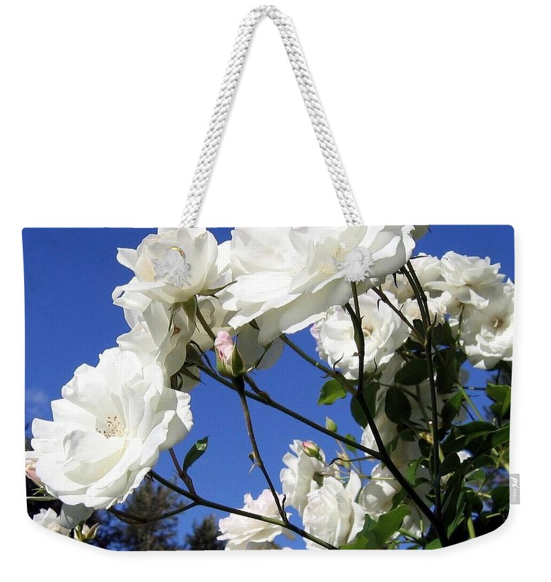 Roses Weekender Tote Bag featuring the photograph The Iceberg Rose by Will Borden
