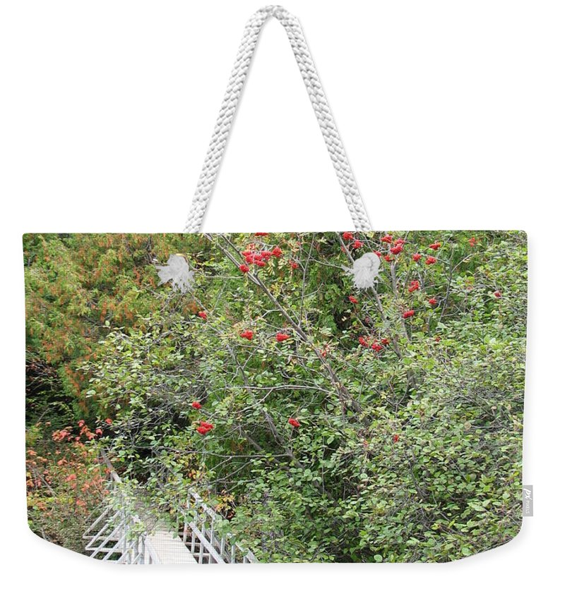 Bridge Weekender Tote Bag featuring the photograph The Journey by Kelly Mezzapelle