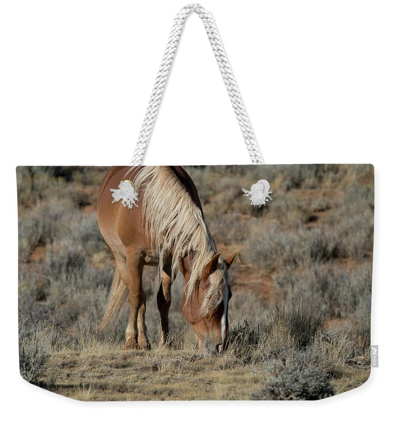 Cody Weekender Tote Bag featuring the photograph The Joy of Nature by Frank Madia