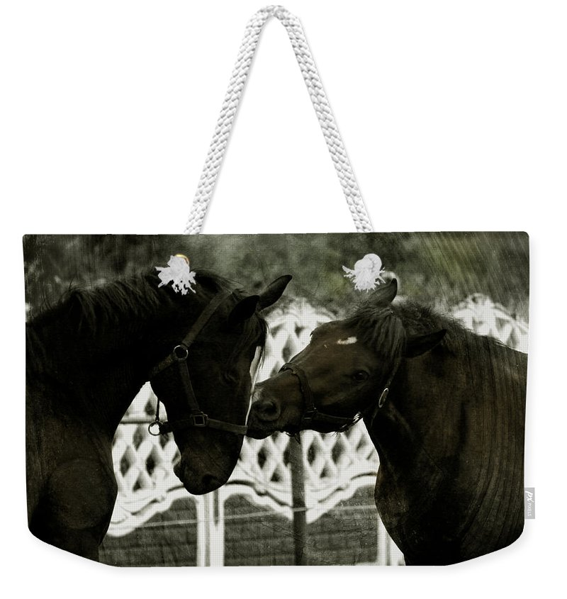 Kiss Weekender Tote Bag featuring the photograph The Kiss by Angel Tarantella