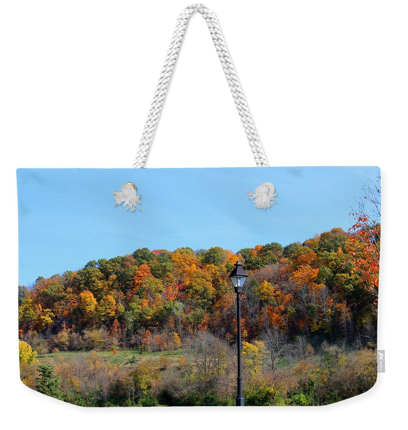 Fall Weekender Tote Bag featuring the photograph The Lamppost by Lorraine Baum