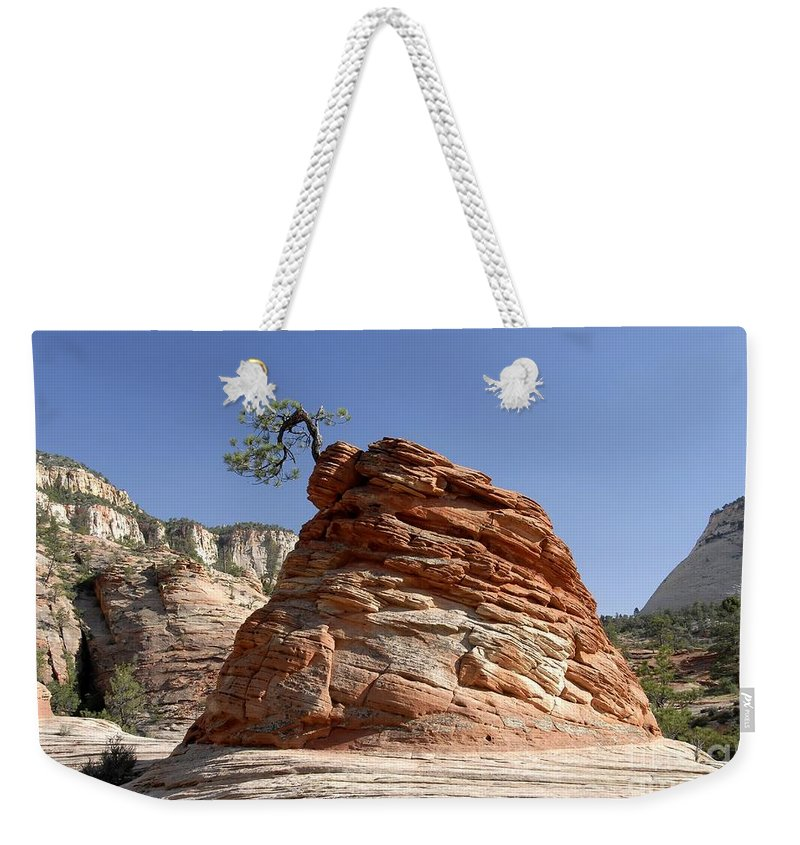 Zion National Park Utah Weekender Tote Bag featuring the photograph The Land Of Zion by David Lee Thompson