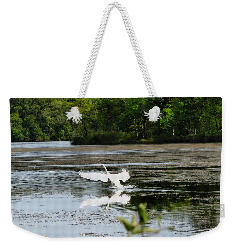 Swan Weekender Tote Bag featuring the photograph The Landing by September Stone